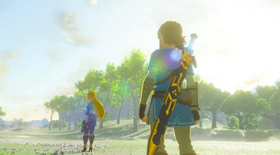 Zelda the hero?